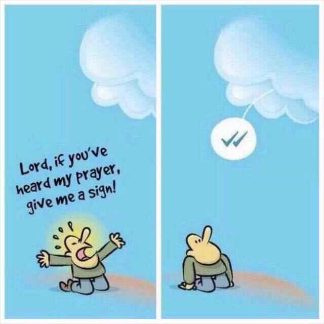 whatsapp message seen